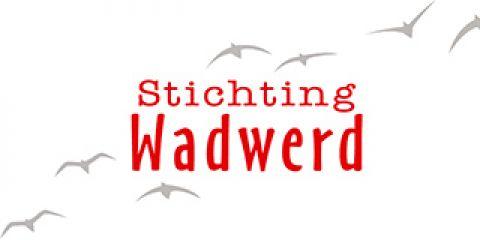 Stichting Wadwerd